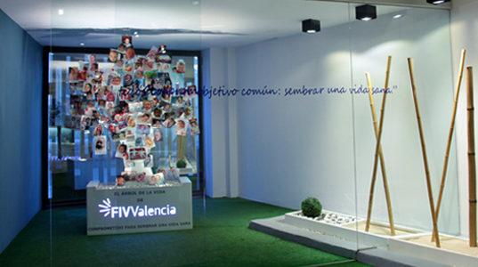 fiv-valencia-clinica12